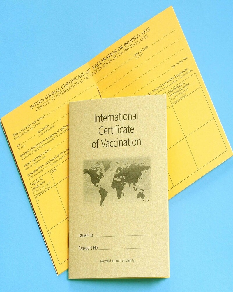 Page-17-Vaccination-Book