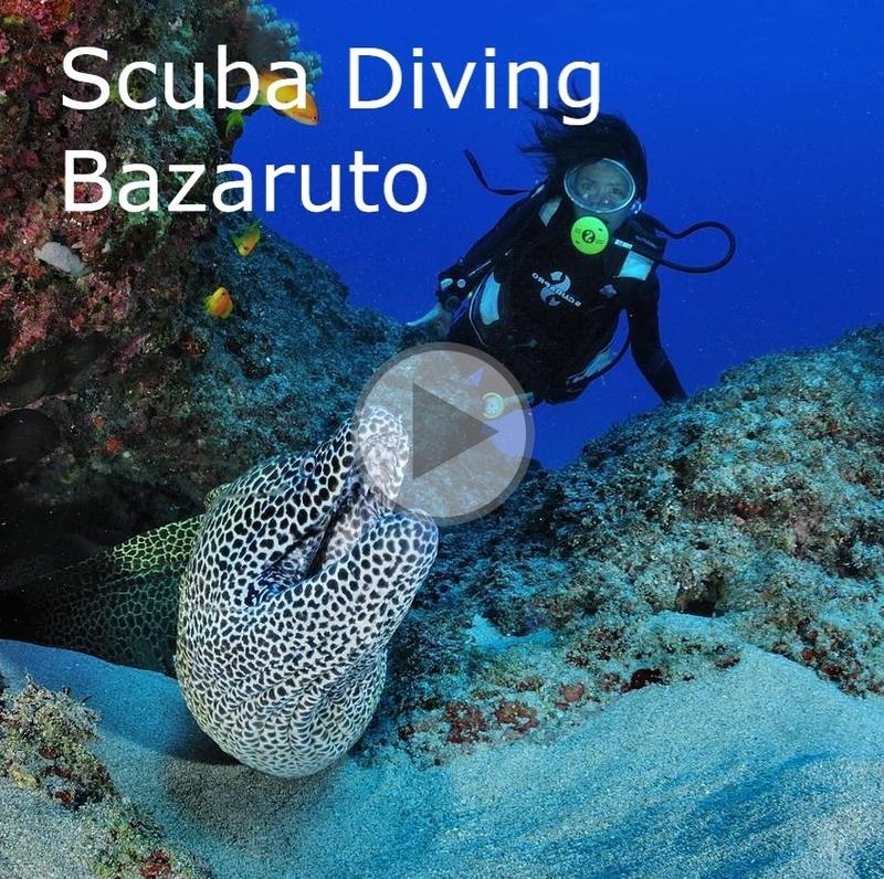 _diving-reunion