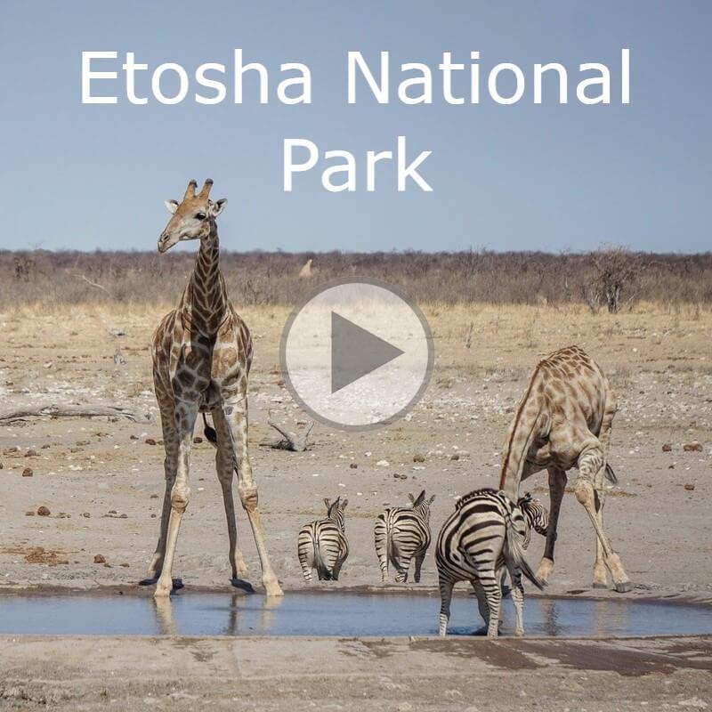 Etosha 2