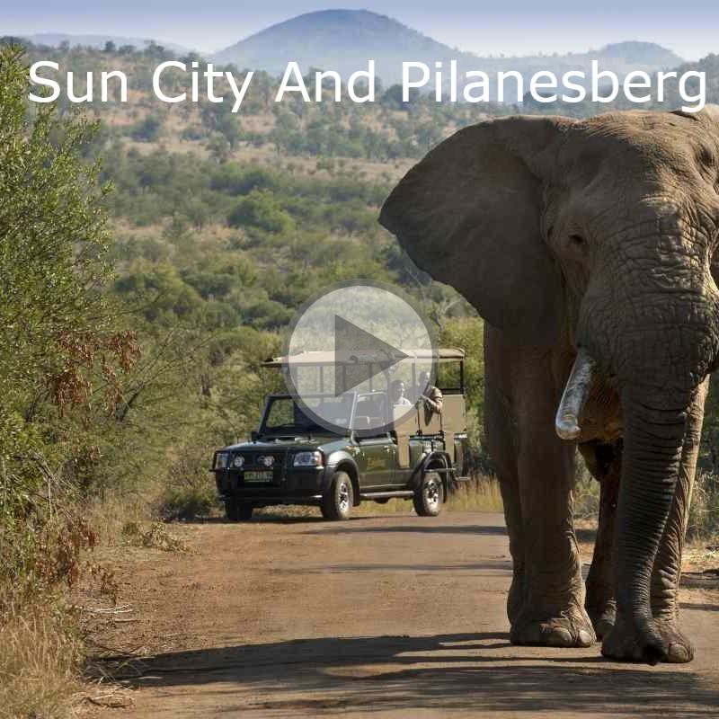 pilanesberg-national-park-2-800x800