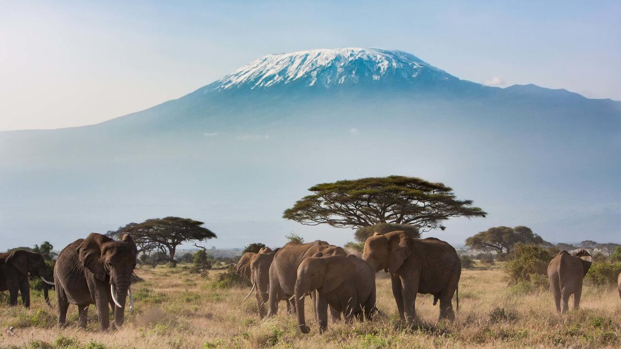 arusha_kilimanjaro