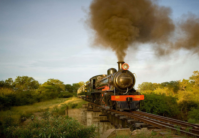 royal-livingstone-steam-train (1)