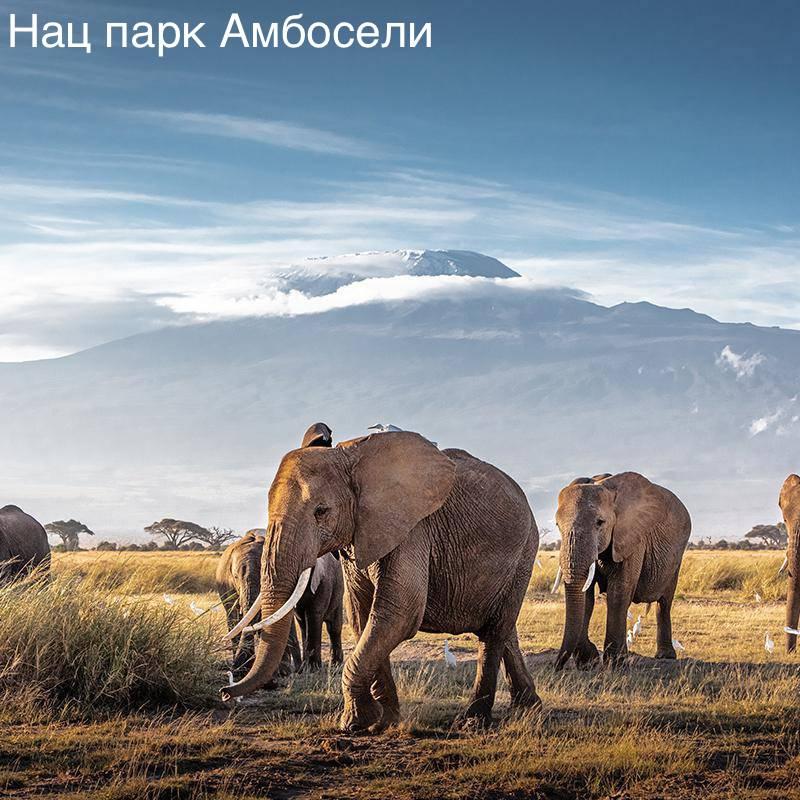 Amboseli-when-to-go.jpg.1920x500_q70_crop-scale