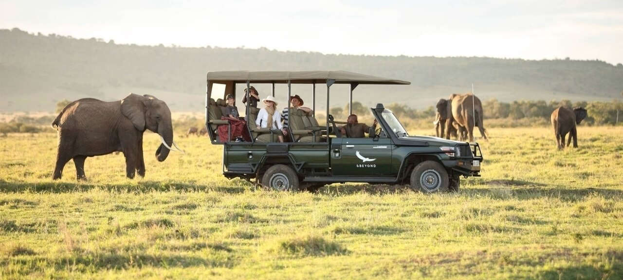 elephants-on-a-game-drive-in-t (1) (1)