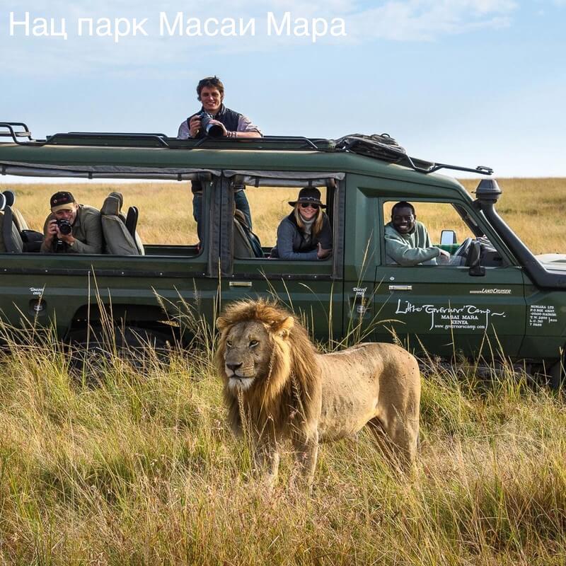 tours__safari (1)