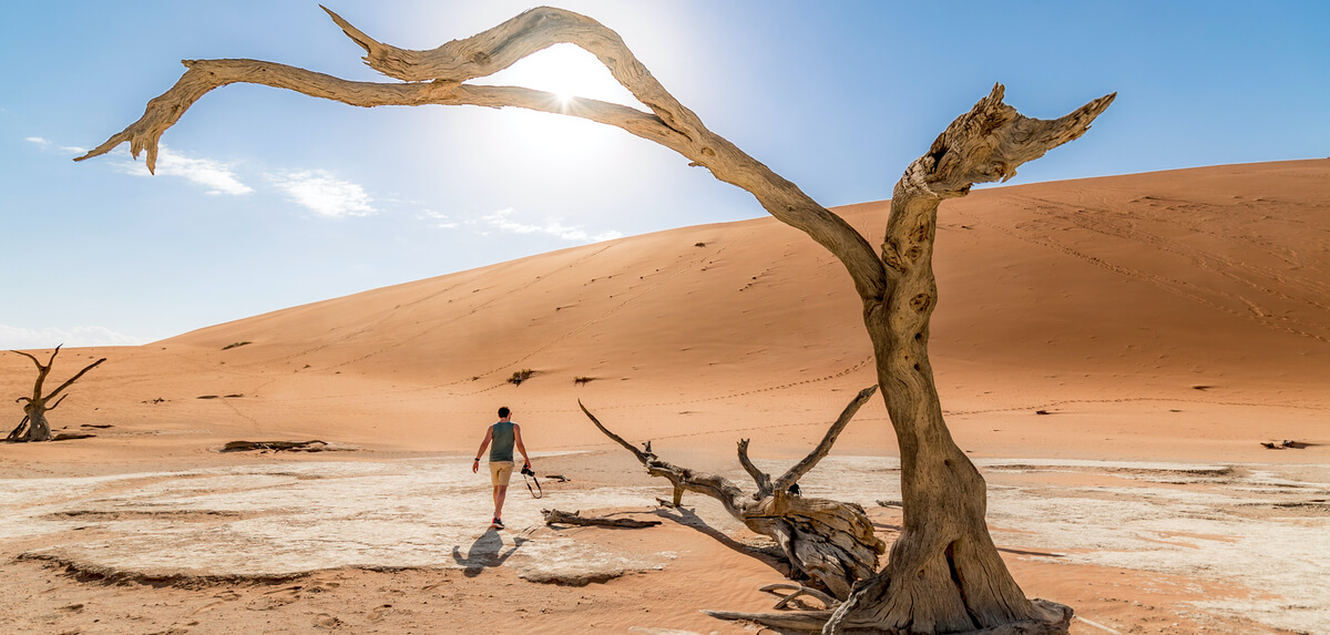 man-in-deadvlei-tree (1)